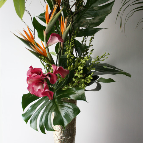 corporate office flowers nyc, weekly flowers nyc, modern floral design, rachel cho floral design