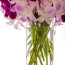 Same day flower delivery NYC, Thai orchid, Rachel Cho Floral Design