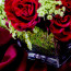 same day flower delivery NYC, rose arrangement NYC, Rachel Cho Floral Design