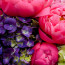 Same day flower delivery NYC, peony, Rachel Cho Floral Design