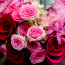 Same day flower delivery NYC, Valentine's Day flowers, roses, Rachel Cho
