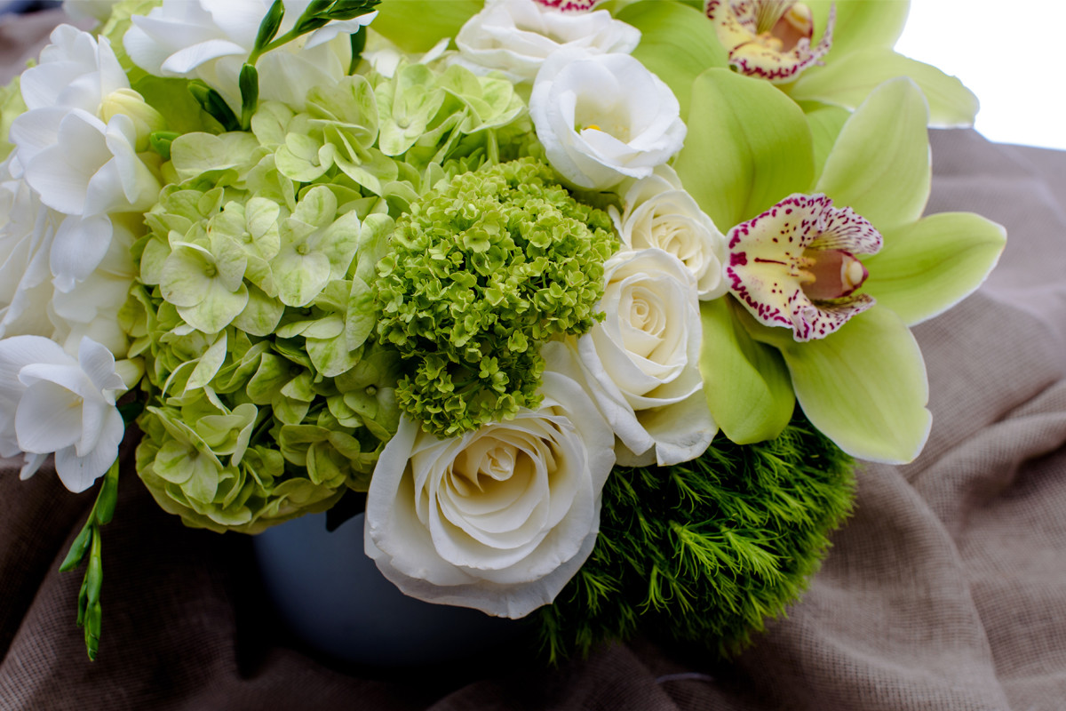 same day flower delivery NYC, orchids, roses, hydrangea, Rachel Cho Floral Design