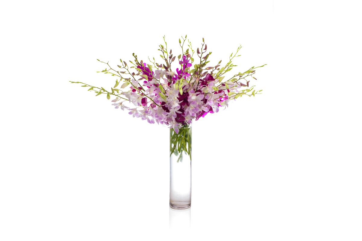 dendrobium orchid, mokara orchid, luxury flower gift delivery nyc, rachel cho floral design