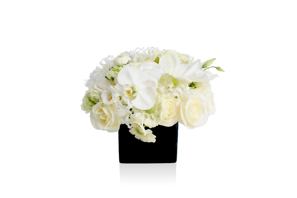 orchid, modern floral design, flower gift delivery nyc, rachel cho floral design