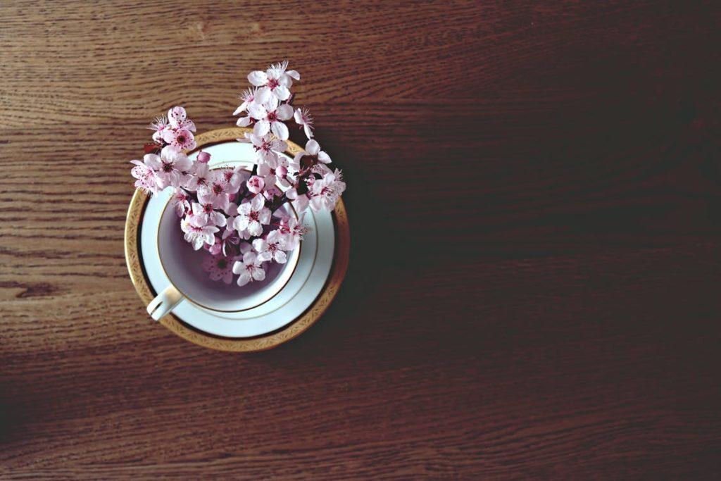 Spring Flower Guide