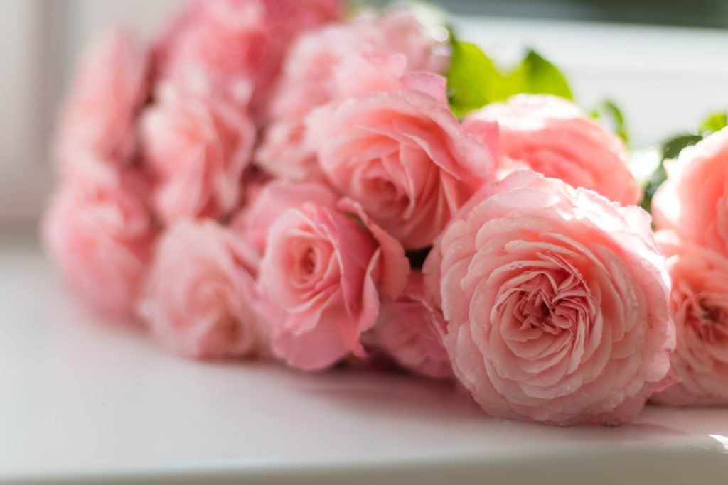 Flower Symbolism: Why It's Good for Wedding Bouquets