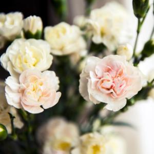 The Best Flower Gift For Each Wedding Anniversary
